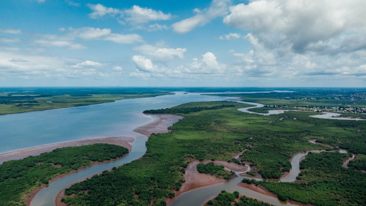Aerial View of An Estuary And Its Surrounding Lush Landscape