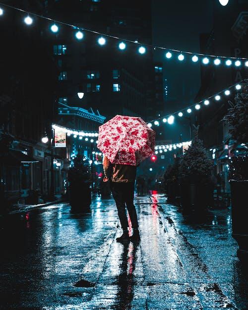 下雨天, 光反射, 喜怒無常, 心情 的 免費圖庫相片