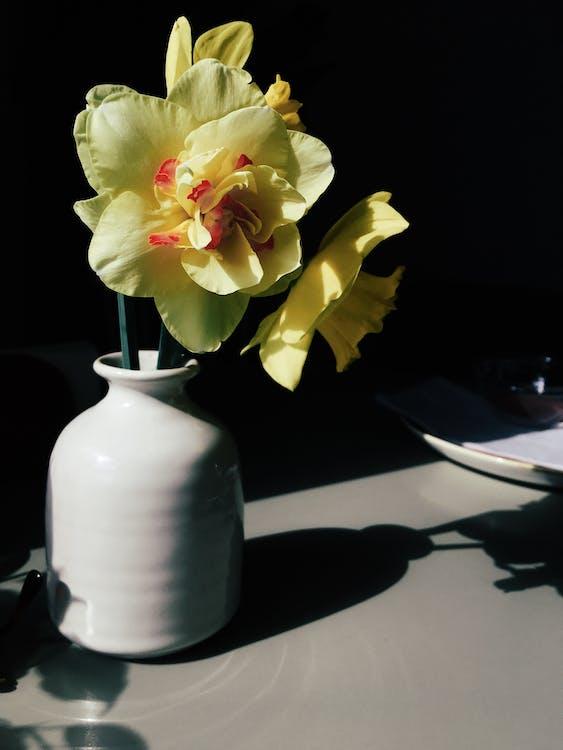 Fotos de stock gratuitas de amor, arreglo floral, artículos de cristal