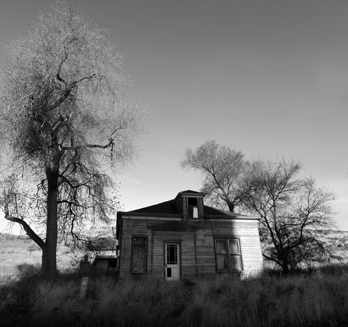 Grayscale Photography of Wooden House in Field