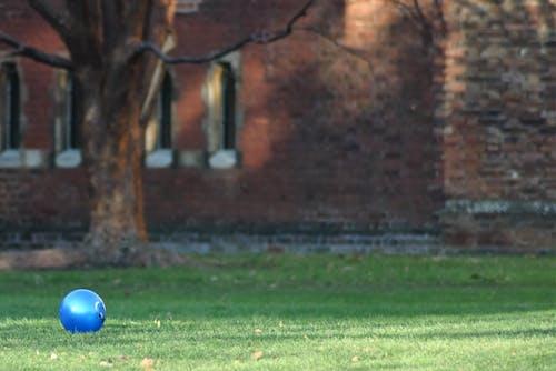 Free stock photo of ball, play, yard