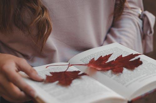 Darmowe zdjęcie z galerii z czytać, czytanie, książka, liść