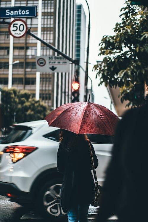 Darmowe zdjęcie z galerii z budynki, dama, deszcz, dziewczyna