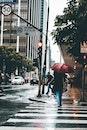 city, crossing, road