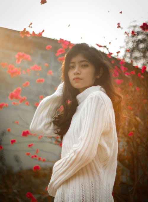 Foto profissional grátis de crepúsculo, flores de cerejeira, fotografia de retrato, inverno