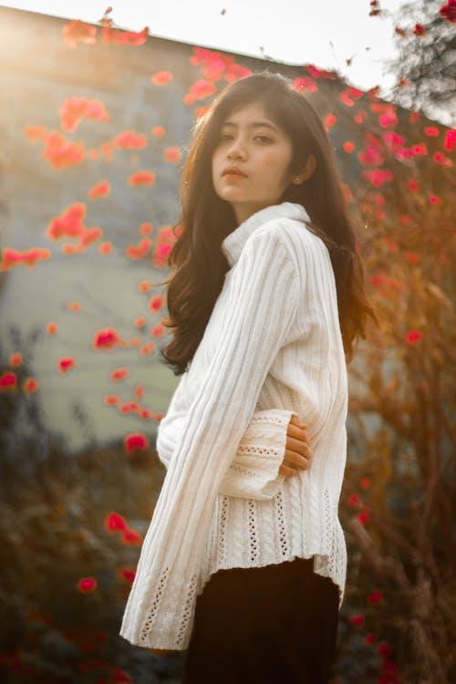Foto profissional grátis de asntm, flores de cerejeira, fotografia de retrato, inverno