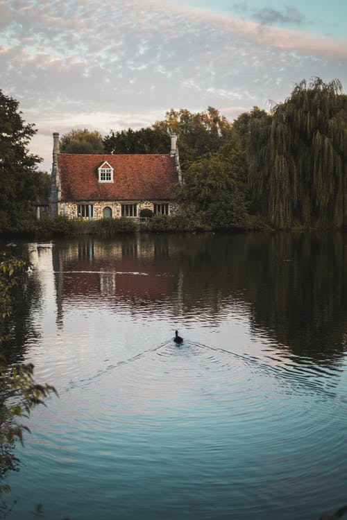 A Cottage House By A Calm Body of Water Near Green-leafed Trees