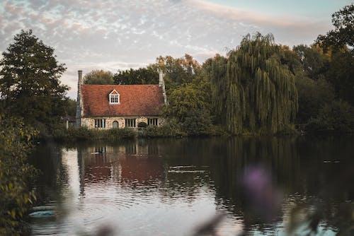 강둑, 리버 하우스, 물, 버드 나무의 무료 스톡 사진