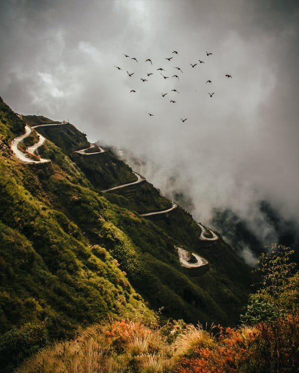 A Flock Of Birds in Flight The Mountain With A Winding Road