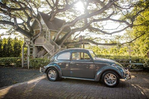 Бесплатное стоковое фото с Volkswagen Beetle, автомобиль, Автомобильный, блестящий