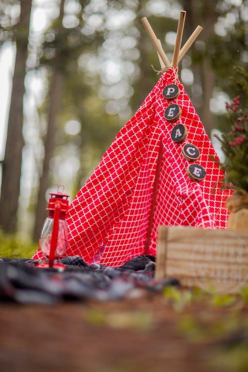 キャンピング, キャンプ, キャンプ場の無料の写真素材