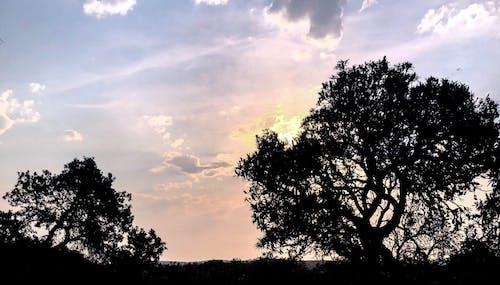 Free stock photo of Beautiful sunset, blue, clouds, golden yellow