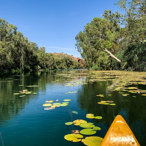 Free stock photo of beauty in nature, canoeing, reflections