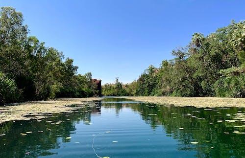 Free stock photo of beautiful, blue sky, reflections
