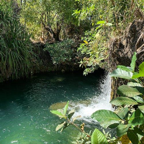 Free stock photo of beautiful, clear water, waterfalls