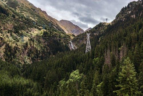 夏天, 天性, 山, 山谷 的 免費圖庫相片