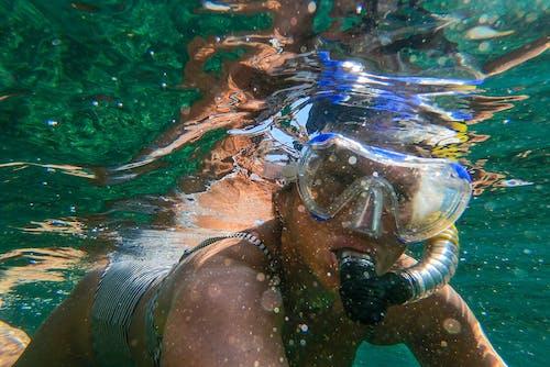 Kostnadsfri bild av doppa, dykare, dykning, fritid