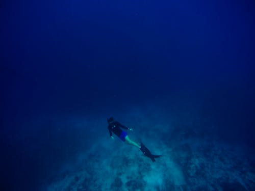 Person Scuba Diving Underwater Deep Sea Water