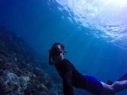 Gratis stockfoto met avontuur, blauw, diep, duiken