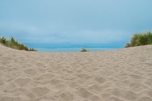 天性, 沙丘, 沙滩, 海灘 的 免费素材照片