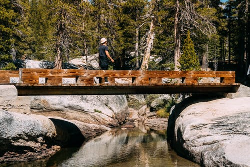 Man standig on Brown Bridge Near Green-leafed Trees