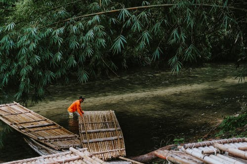 Man In The River A Pulling Bamboo Raft  To The Water