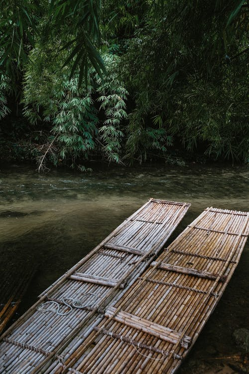 Imagine de stoc gratuită din ambarcațiune, apă, apă curgătoare, arbori