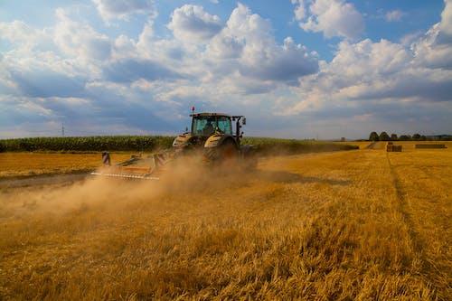 下田, 农业机械, 农业用地, 小麥 的 免费素材照片