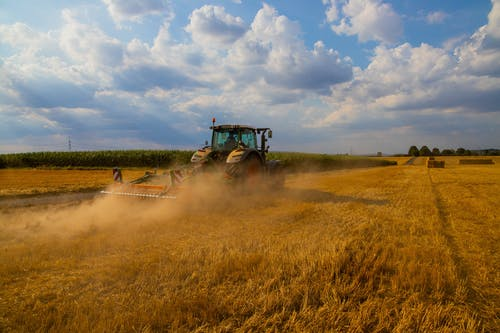 Fotos de stock gratuitas de agra, agricultura, agricultura controlada, campo de trigo