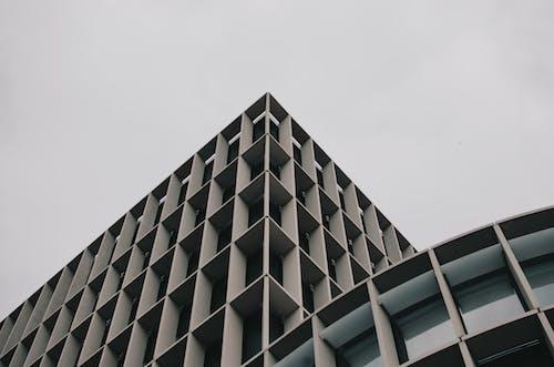Darmowe zdjęcie z galerii z architektura, budynek, perspektywa, perspektywa żabia