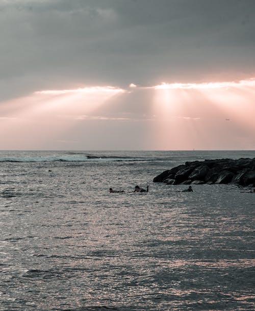 Foto d'estoc gratuïta de aigua dolça, bonic capvespre, fer surf, Hawaii