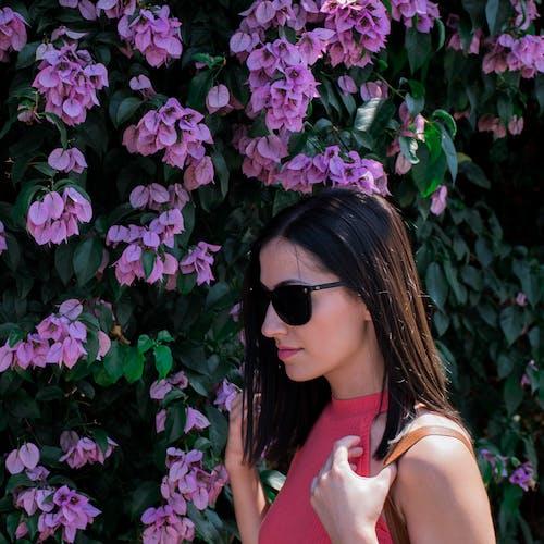 夏天, 太陽眼鏡, 女孩, 年輕女子 的 免费素材照片