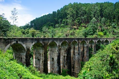 Ilmainen kuvapankkikuva tunnisteilla junanrata, lopuille, silta, vihreä