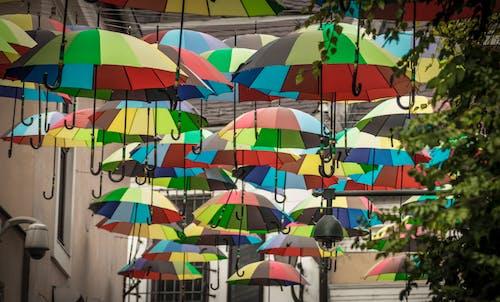 Free stock photo of colorful, lot, umbrella, umbrellas
