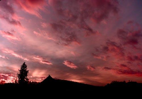 Free stock photo of Beautiful sunset, clouds, pink, pink sky