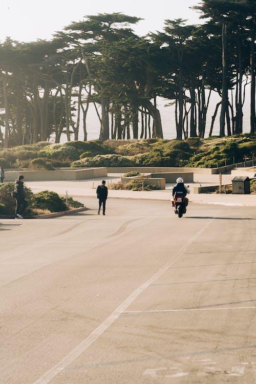 バイク, レクリエーション, 交通機関, 休暇の無料の写真素材