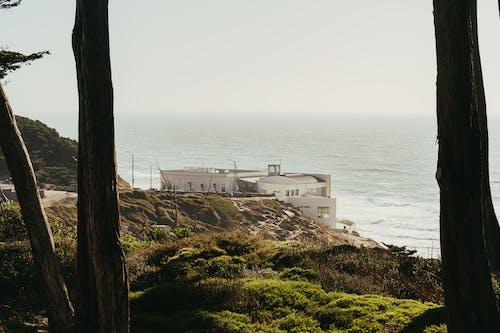Gratis lagerfoto af arkitektur, bygning, dagslys, hav
