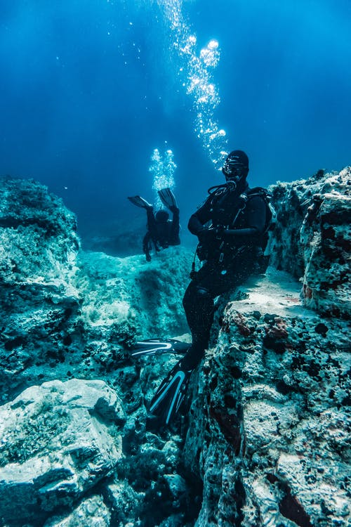 Darmowe zdjęcie z galerii z głęboki, koralowce, morze, nurkowie