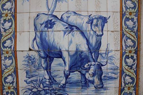 Free stock photo of bulls, tile