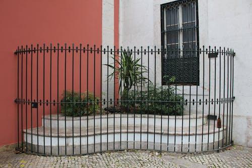 Free stock photo of gate, plants