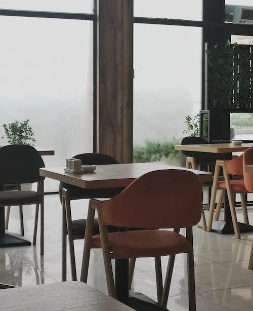 가구, 레스토랑, 방, 식사의 무료 스톡 사진