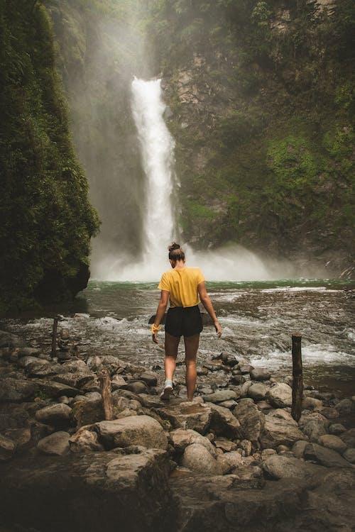 Безкоштовне стокове фото на тему «batad, Азія, відкриття, вода»