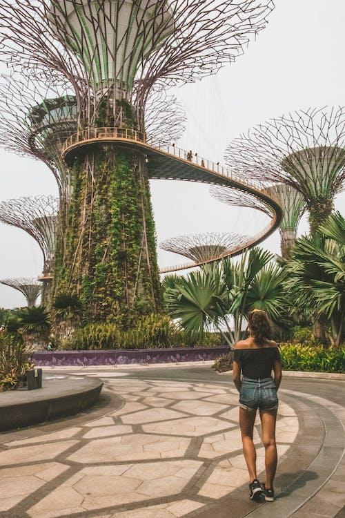 건축, 걷고 있는, 뒷모습, 정원의 무료 스톡 사진