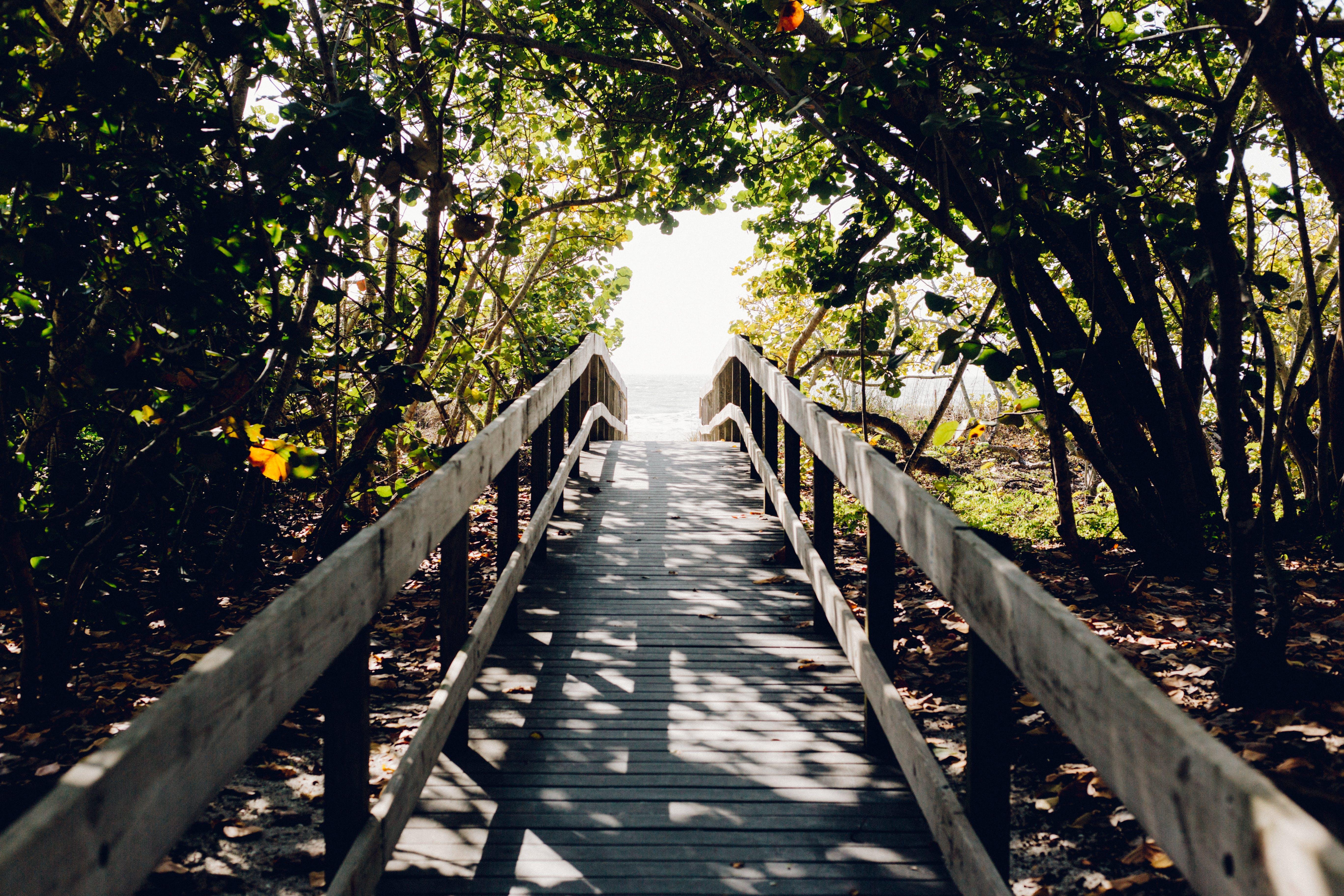 beach, boardwalk, bridge