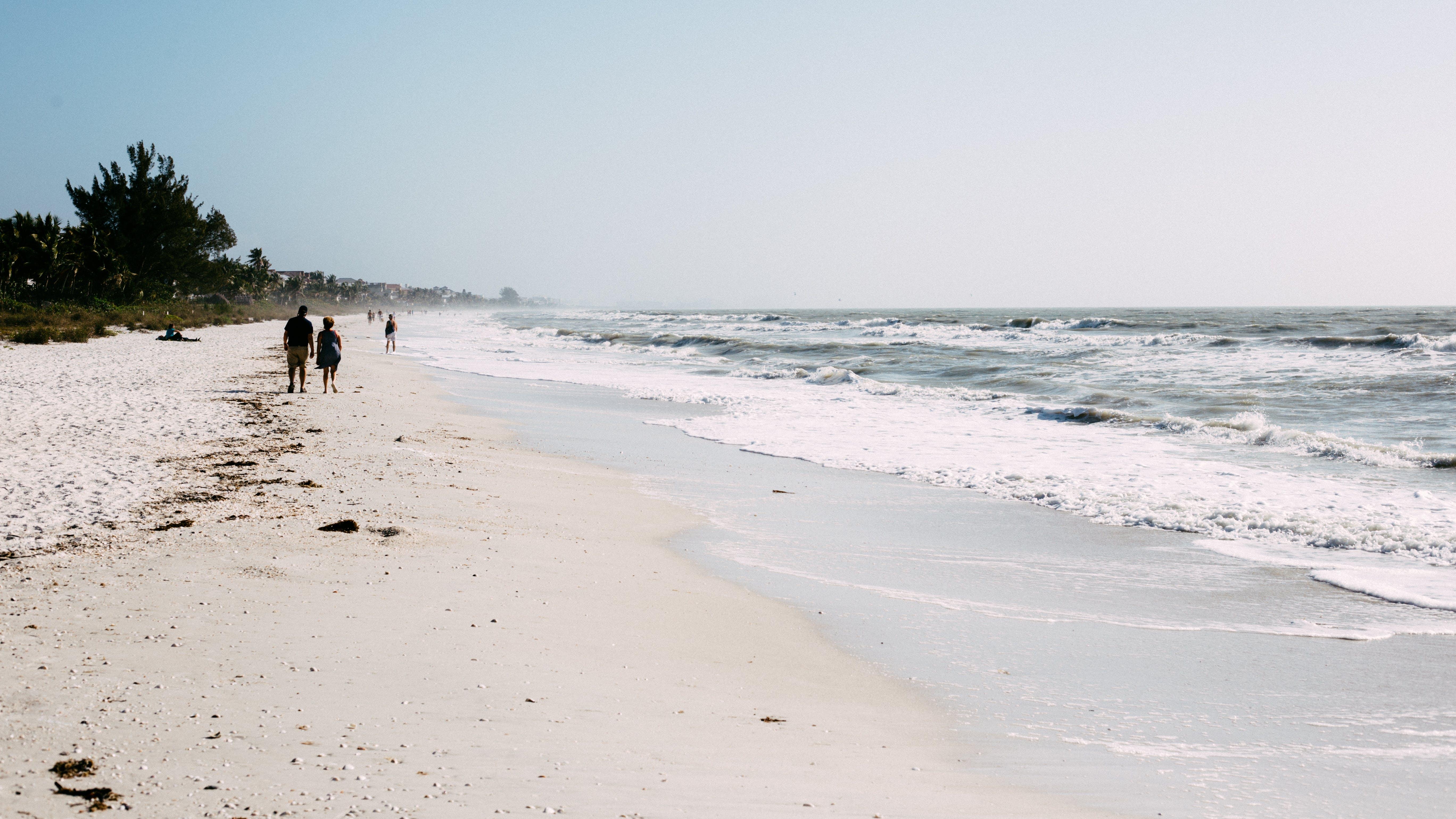beach, horizon, nature
