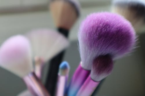 Free stock photo of beautiful, brush, color, colorful