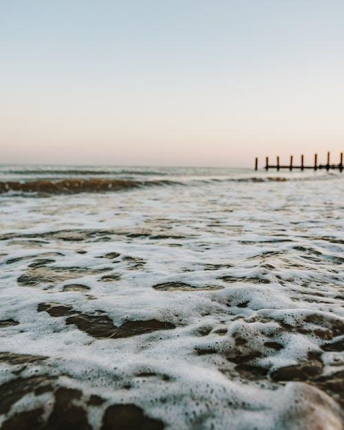 คลังภาพถ่ายฟรี ของ ชายทะเล, ชายหาด, ทะเล, น้ำ