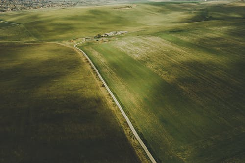 Ingyenes stockfotó farm, legelő, mező, mezőgazdaság témában