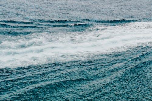 Бесплатное стоковое фото с вода, водоем, море, океан