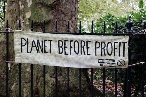 Free stock photo of climate change, extinction rebellion, london